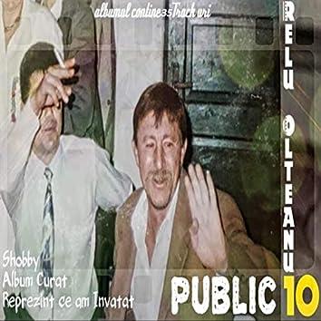 Public 10