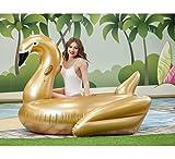 Creaciones Llopis Cisne SY 200CM 8422802062147 Brazaletes y flotadores, Adultos Unisex, Oro (Dorado), Talla Única