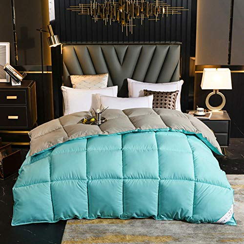 cyxb Double Size Duvet Feather and Down Duvet,Goose Down Duvet Winter Comforter White Blanket Cotton Cover Quilt Super King Queen Double Twin Size-Green gray_200*230cm/79 * 91'/9.9LB