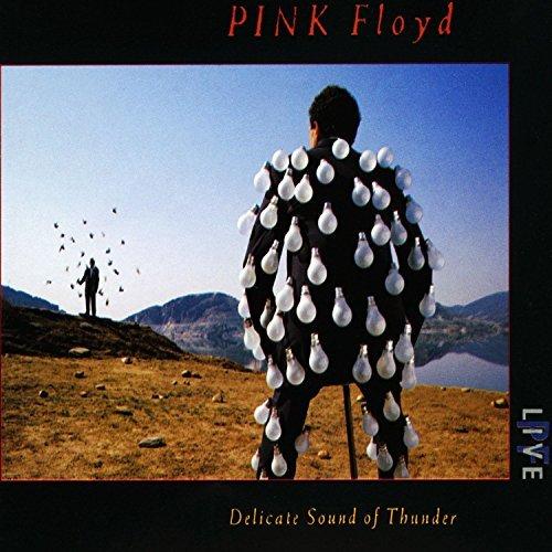 Delicate Sound Of Thunder (1988-11-21) -  EMI