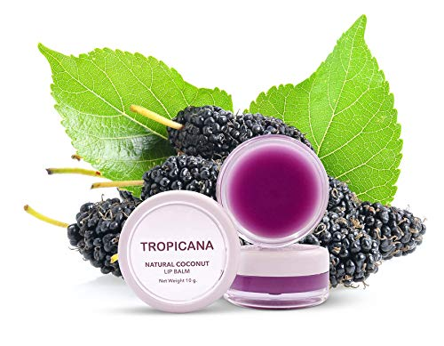 Tropicana Oil Doppel Packung Lippenbalsam Mulberry Cheerful 2x10g | Kaltgepresstes Kokosöl Naturkosmetik | Lip Balm | Lippenpflege mit Shea Butter Bienenwachs Kakaobutter Candelilla-Wachs