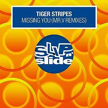 Missing You (Mr. V Remixes)