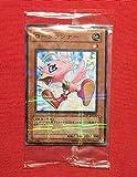 遊戯王 ロードランナー スターターデッキ 2008 大会 配布 限定版 ノーマルパラレルレア