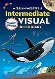 Merriam-Webster's Intermediate Visual Dictionary