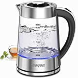 BOYON Electric Kettle Glass Tea Kettle - 1500W 1.8L Large Capacity with LED