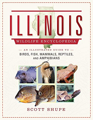 The Illinois Wildlife Encyclopedia: An Illustrated Guide to Birds, Fish, Mammals, Reptiles, and Amphibians (English Edition)