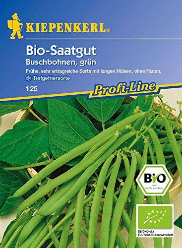 Bio-Buschbohne, grün