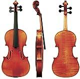 GEWA Strings Violín Maestro 454/4Guarneri