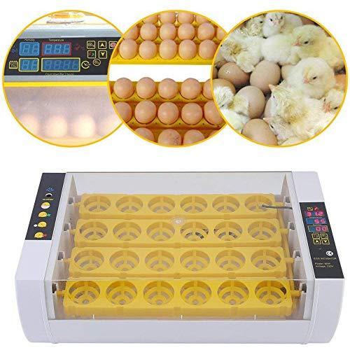 GRX-ZNLJT Inkubator 24 Eier Groß Brutmaschine Vollautomatische Geflügel Brüter Brutzubehör mit Temperatur Luftfeuchtigkeit Anzeige Automatische Wendung Inkubator Brutapparat für Hühner
