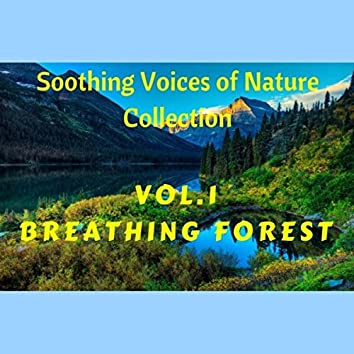 Soothing Voices of Nature Vol.1 - Breathing Forest (Relaxing, Deep Sleep)