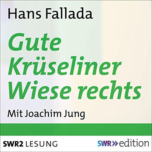 Gute Krüseliner Wiese rechts cover art