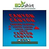 Ecoshirt 9H-SM6E-VO63 Pegatinas Stickers Canyon Bike Aufkleber Decals Autocollants Adesivi Frame