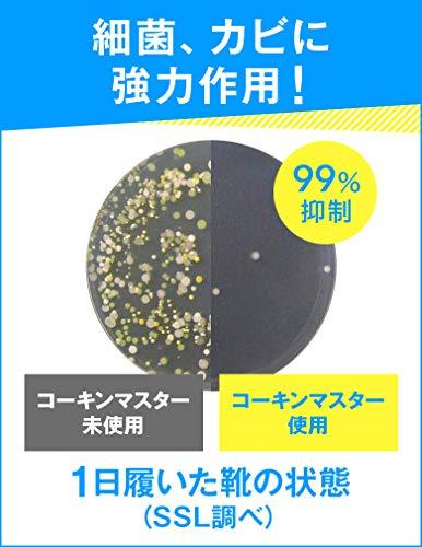 インソール中敷き消臭抗菌ドクターショール男女兼用フリーサイズ1足分(2枚入)