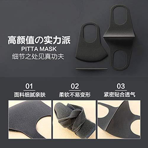 ARAX Pitta Mask, Gray, 0.13 Pound