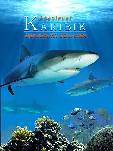 Abenteuer Karibik - Tauchen mit den Haien