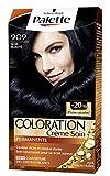 Schwarzkopf - Palette - Coloration Permanente Cheveux - Noir Bleuté 909