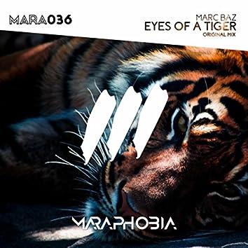 Eyes Of A Tiger
