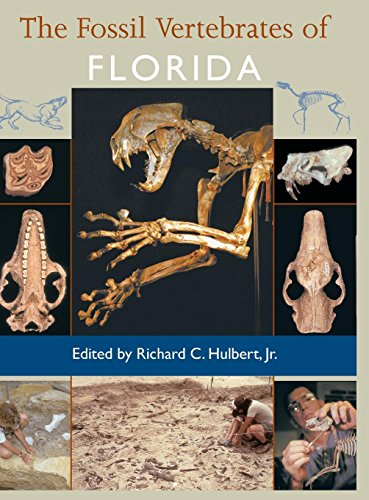 Compare Textbook Prices for The Fossil Vertebrates of Florida 1st Edition ISBN 9780813018225 by Hulbert Jr., Richard C.,Portell, Roger