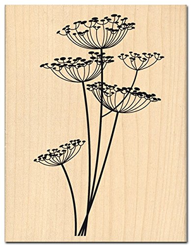 Florilèges Design fh112001Stempel Scrapbooking Blumen Leichte beige 13x 10x 2,5cm