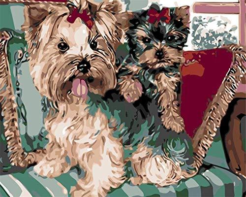 Pintura por números 40 x 50 cm Sin Marco Perro en el sofá DIY Pintura al óleo Kit con Pinceles y Pinturas para Niños Seniors Junior