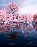 Número de imagen Número de pintura de bricolaje Número de árbol rosa Número de pintura acrílica Número de número de imagen dibujada a mano Número de arte sin marco 40x50 cm