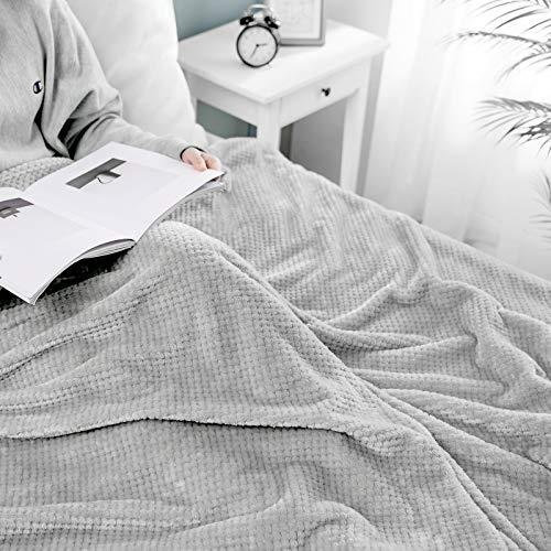 MIULEE Manta Blanket Franela para Sófas Mantas de Terciopelo Diseño Granulado para Siesta Suave Grande Cálida para Cama Felpa para Mascota Cama Habitacion Dormitorio 1 Pieza 220x240cm Gris Claro