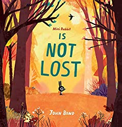 Top Ten Picture Books Chosen By My Three-Year-Old | Picture books for toddlers. Mini Rabbit is Not Lost by John Bond