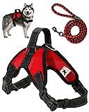 Trongle Arnés para Perros , Arnés Ajustable Arnes Perro Grande Fácil de Controlar, Cómodo al Tacto Arnés para Perros Suavey Transpirable, Cinturón de Nailon con Malla de Aire Ajustable(Rojo, XL)