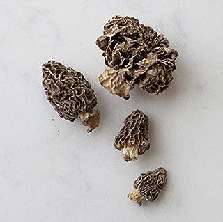 Northwest Wild Foods Dried Morel Mushrooms - Raw Handpicked Sundried of Pacific Northwest (4oz)