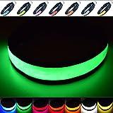 Fun Pets Hundesicherheitshalsband mit ultraheller, wiederaufladbarer LED mit hervorragender Sichtbarkeit und erhöhter Sicherheit Medium (40cm - 50cm / 15.7' - 19.7') Grün