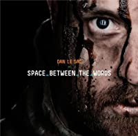 Space Between the Words [12 inch Analog]