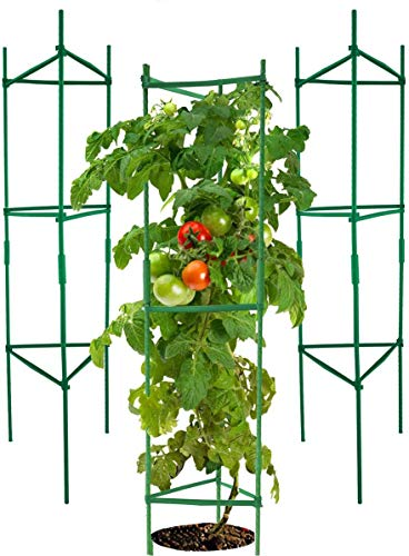 YOHEER Tomato Cages,3 Packs Assembled Garden Plant Support Stakes,...