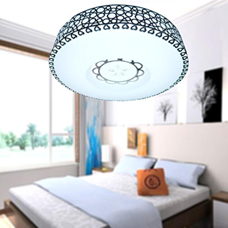 Deckenlampe 24W 35CM Moderne LED-Deckenleuchte, Wohnzimmer Raum Horizontal Gang Edelstahl Runde Acryl Deckenleuchte Energy Star Deckenleuchter (Farbe   Weies Licht-35cm)
