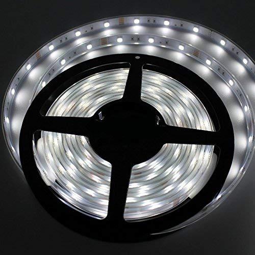 Striscia LED Smd 5050 60 LED 6000K 50W, 5 Metri per Interno