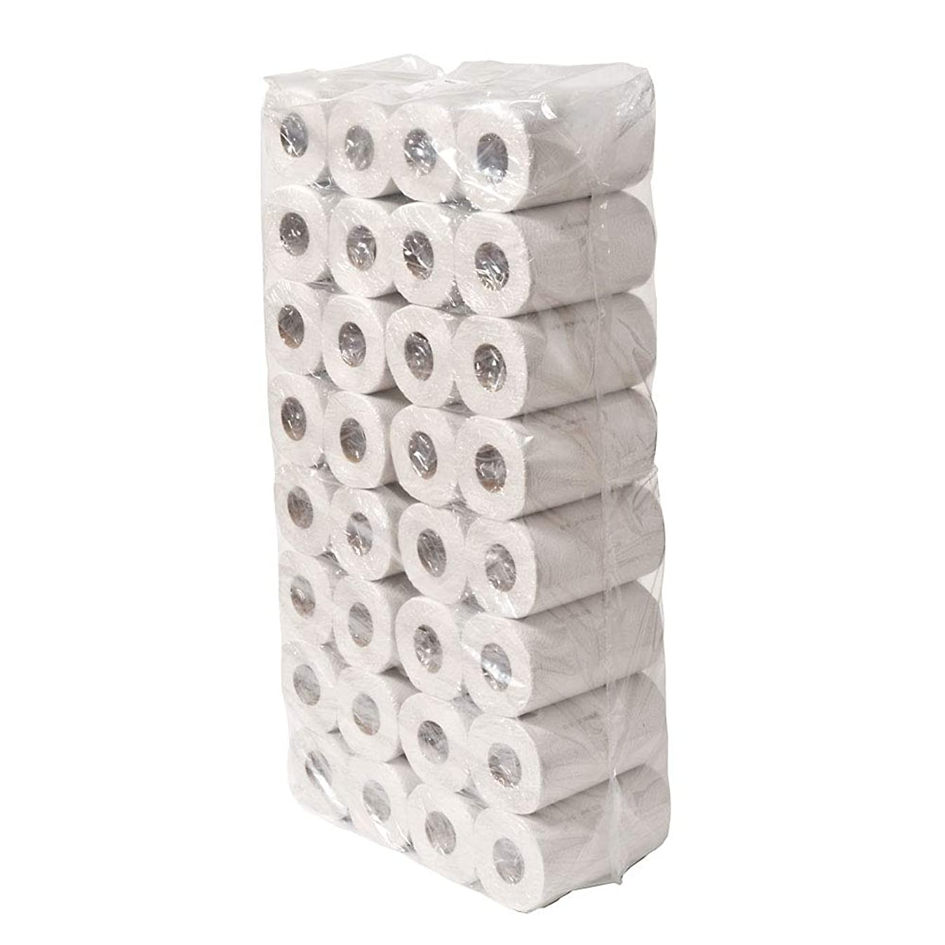 DJGroup Toilet Paper Rolls White Recycled 2-Ply 200 Sheets 64 Small Rolls (16 x 4)
