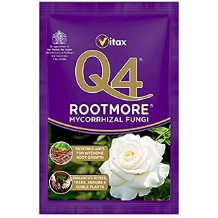 Q4 Mycorrhizal Fungi Rootmore, 60g Sachet:Ege17ru