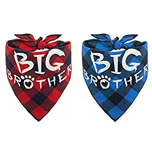 PAWCHIE 2 PCS Plaid Dog Bandana with Big Brother Printing Reversible Triangle Bibs Scarf Accessories for Dogs Cats