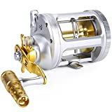 One Bass Fishing Reels Level Wind Trolling Reel Conventional Jigging Reel for Saltwater Big Game Fishing-(TA5000 Silver-Gold-Right Handed)