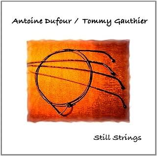 Best antoine dufour strings Reviews