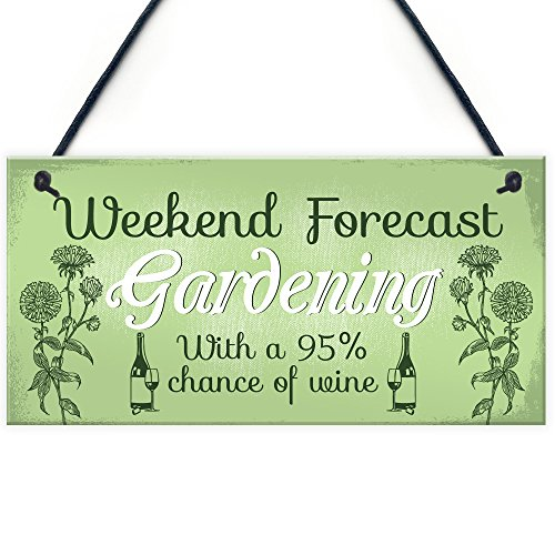 RED OCEAN Garden Novelty Hanging Plaque SummerHouse Garden Shed Wine Friend Gift For Women