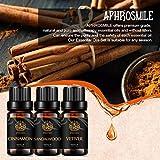 Aceites esenciales de aromaterapia Set - 100% puro de sándalo canela Vetiver aceites esenciales Kit, grado terapéutico aromaterapia sándalo aceites perfumados fijó para el difusor, masaje 3x10 ml