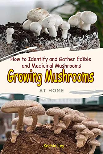 Growing Mushrooms at Home : How to Identify and Gather Edible and Medicinal Mushrooms (English Edition)
