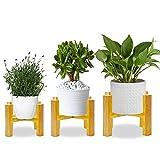 AKOFIC Soporte para Plantas, 3 Piezas Moderno Soporte para Exhibición de Macetas de Madera, Soporte de Maceta de Flores para Decoración Hogar Interior Exterior (Maceta y Planta Excluidas)