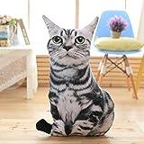 erthome 1 stück Gefüllte 3D Simulation Katze Kissen Lustige Grau Katze Spielzeug Schöne 50 cm (B)