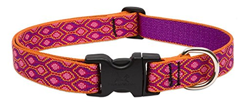 """LupinePet Originals 1"""" Alpen Glow 12-20"""" Adjustable Collar for Medium and Larger Dogs"""