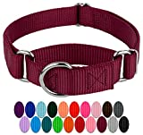 Country Brook Petz - Burgundy Martingale Heavy Duty Nylon Dog Collar - 21 Vibrant Color Options (1 Inch Width, Large)