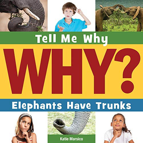 Elephants Have Trunks cover art