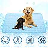 Best Cooling Pad For Dogs - LHRXTY Dog Cooling Mat Pet Self Cooling Sleep Review