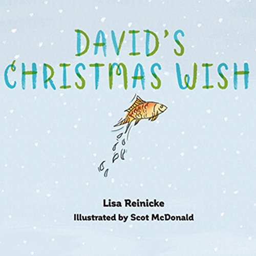 David's Christmas Wish audiobook cover art