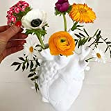 IKDG Resin Flower Pot, Anatomical Heart Vase, Desktop Ornament Home Decoration for Office or Farmhouse Rustic Home Décor